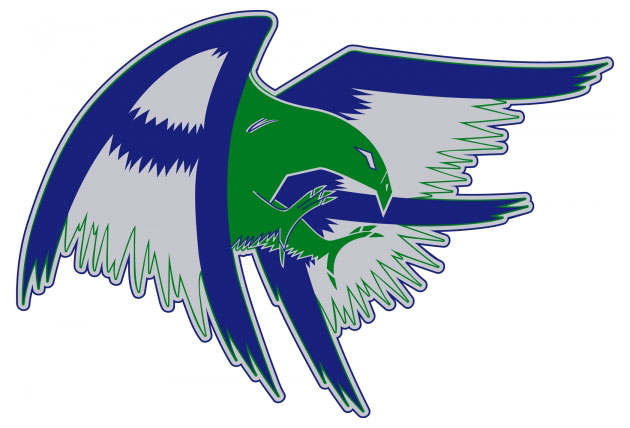 Falcons hockey old logo