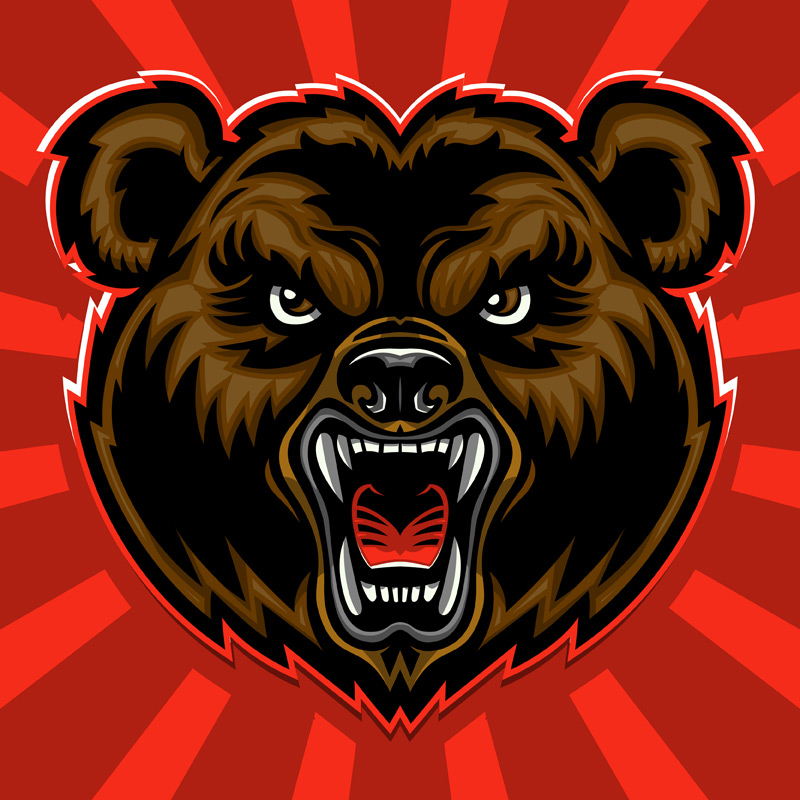 Bear vector illustration